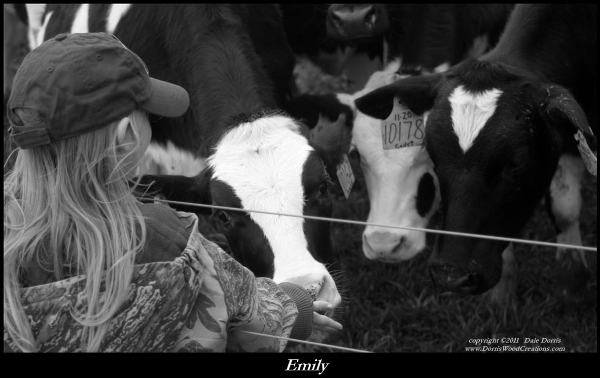 Emily_cow_c_BW_bord_text_94KB.jpg