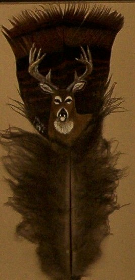 FeatherBuck_cropped.jpg